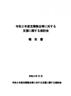 【報告書】令和2年度 支障除去等に対する支援に関する検討会 報告書